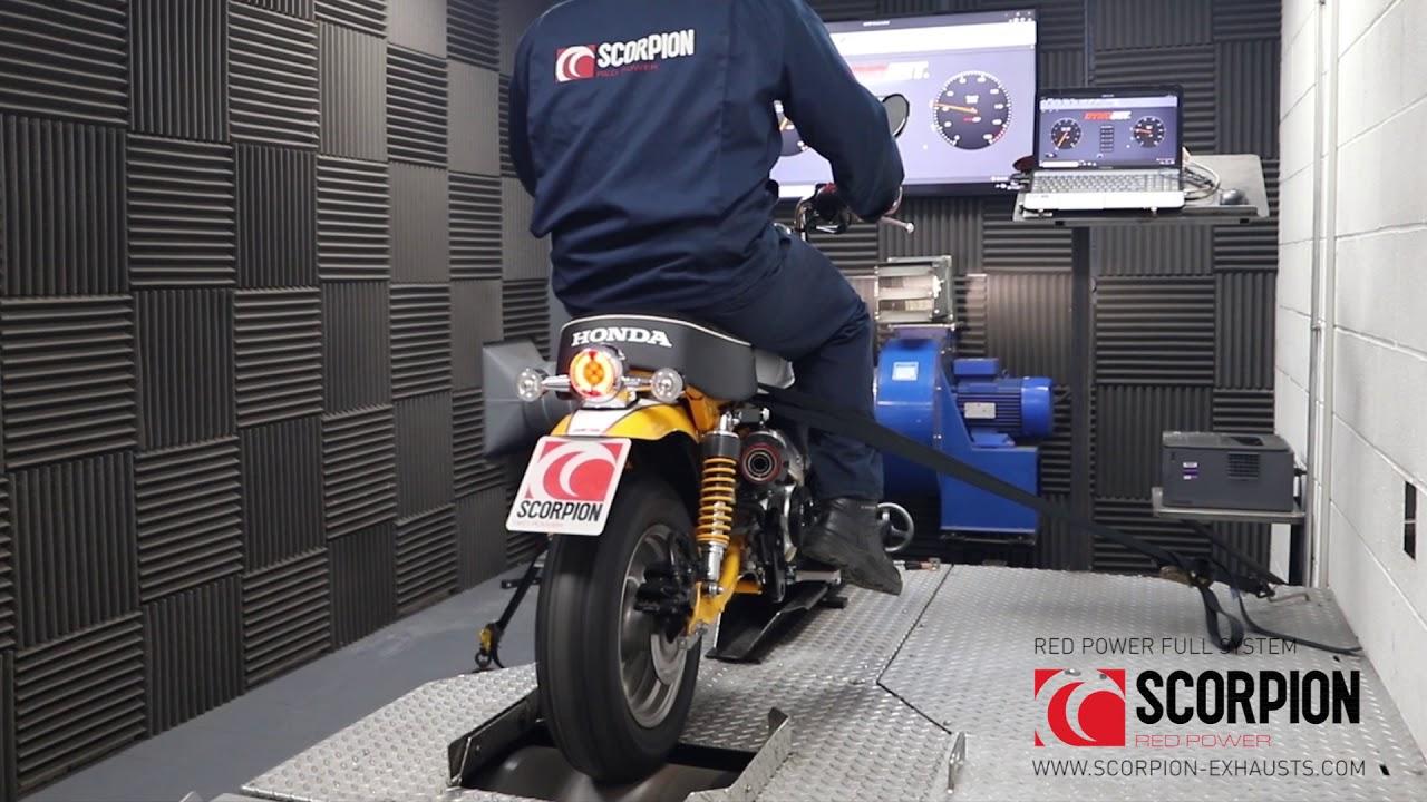 Scorpion Red Power Komplettanlage für Honda Monkey 125 2018-2021 Motorräder